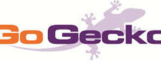go geeko regular - cleaning client