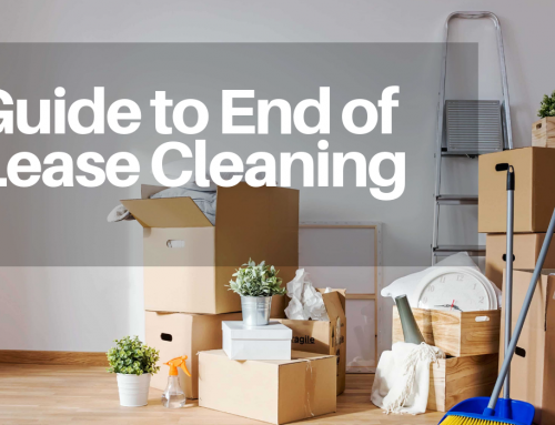 Guide to end of Lease Cleaning in Melbourne